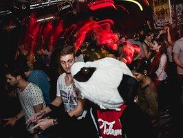 Galerie von: Panda Party